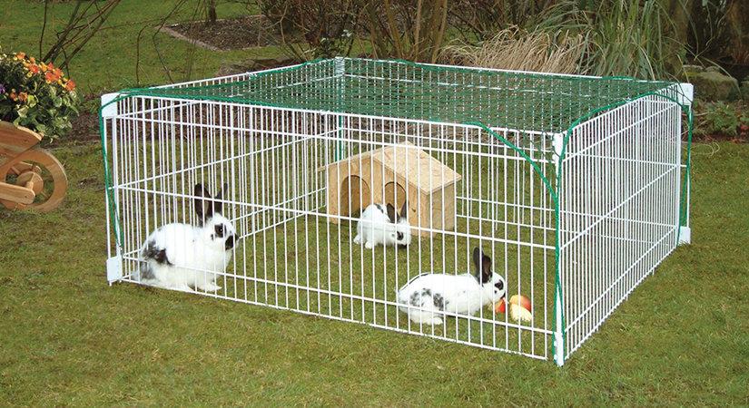 Top 5 des meilleures cages pour lapins 2020
