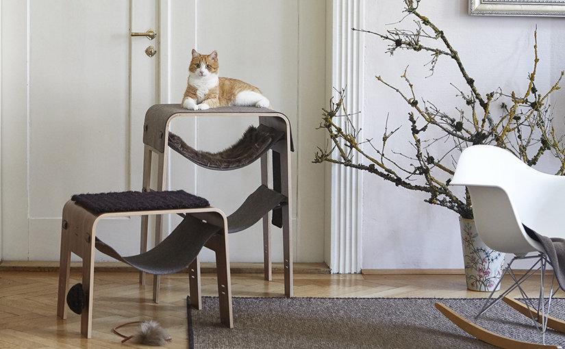 Top 5 des meilleurs arbres à chats 2020